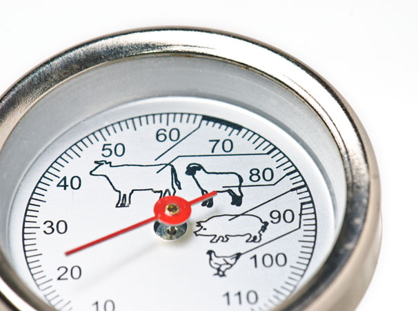 Why Bother Using a Food Thermometer When Cooking or Holding Food?
